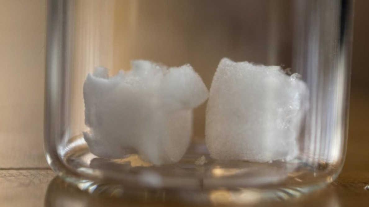 Celuloza może być nowym materiałem kościotwórczym w implantologii