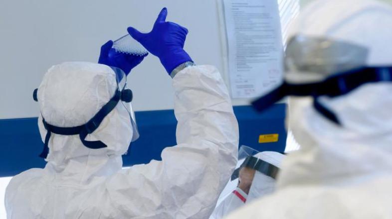 Współpraca polskich badaczy z Europejskim Instytutem Bioinformatyki